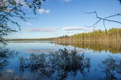 Blauer Himmel mit Wolken und grünem Baum-Wasser-Reflexions-Niederlassungs-Rahmen stockbild