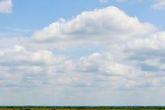 Blauer Himmel mit Wolken und Wiese mit grünem und gelbem Gras Lizenzfreie Stockbilder