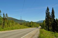 Blauer Himmel Straße Wald Stockfotos