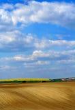Blauer Himmel und Felder Stockbild