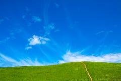 Blauer Himmel und grüne Wiese Stockfotografie