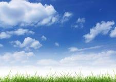 Blauer Himmel und grünes Gras. lizenzfreies stockbild