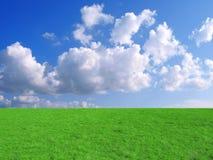 Blauer Himmel und Gras Lizenzfreie Stockfotos