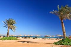 Blauer Himmel und Regenschirme auf dem Strand Stockfoto
