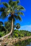 Blauer Himmel und schöner See Lizenzfreie Stockbilder