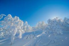 Blauer Himmel und Schnee Lizenzfreies Stockbild