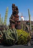 Blauer Himmel und Windmühle in einem Kaktus arbeiten im Garten Lizenzfreie Stockfotos