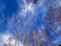 Blauer Himmel vom Baikalsee stockfotos