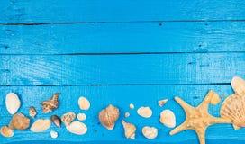 Blauer Hintergrund des Sommers mit Muscheln Stockbilder