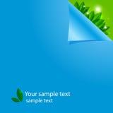 Blauer Hintergrund mit den Blumenblättern Lizenzfreie Stockfotos