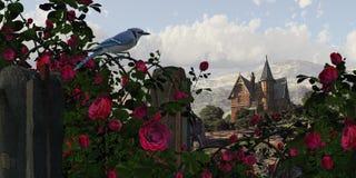 Blauer Jay unter den Rosen Lizenzfreies Stockbild
