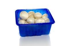 Blauer Kasten mit Pilzen Stockfotos