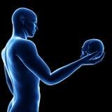 Blauer Kerl, der einen Schädel hält Lizenzfreies Stockfoto