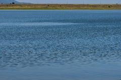 Blauer leerer Wasserhintergrund - leeren Sie natürliche Oberfläche Lizenzfreies Stockbild