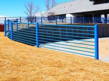 Blauer Metallzaun durch Gras Stockfotos