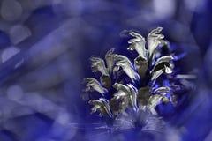 Blauer mit Blumenhintergrund Wildflowers weiß auf einem blured bokeh Hintergrund Nahaufnahme Weicher Fokus Lizenzfreie Stockfotos