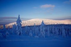 Blauer Moment auf Winter Stockfotografie