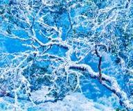 Blauer Naturzusammenfassungshintergrund. Lizenzfreie Stockfotos
