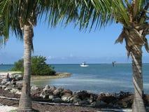 Blauer Ozean gestaltet von Palms Stockbilder