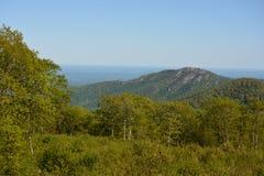 Blauer Ridge Mountains im Sommer Stockfotos
