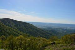 Blauer Ridge Mountains im Sommer Lizenzfreies Stockbild