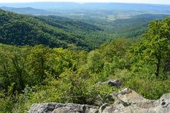 Blauer Ridge Mountains im Sommer Stockbilder