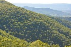 Blauer Ridge Mountains im Sommer Lizenzfreie Stockfotos