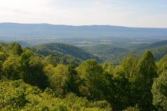 Blauer Ridge Mountains im Sommer Stockfotografie