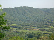 Blauer Ridge Mountains in Virginia Stockfoto