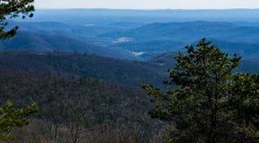 Blauer Ridge Mountains von der Becken-Bucht übersehen, blauer Ridge Parkway, North Carolina, USA Lizenzfreie Stockfotos