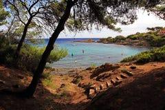 Blauer Schacht-Mittelmeerküste-Zeile durch Kiefern Stockfotografie