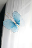 Blauer Schmetterling auf einem weißen Hintergrund Stockbild