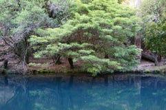 Blauer See stockbilder