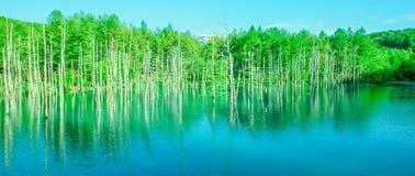 Blauer Teich Stockfoto