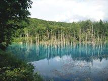 Blauer Teich Lizenzfreies Stockfoto