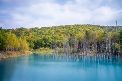 Blauer Teich in Hokkaido stockbilder