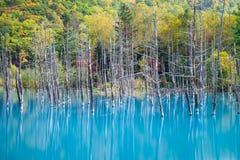 Blauer Teich in Hokkaido Stockbild