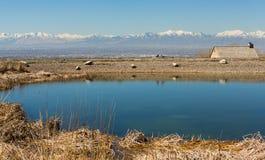 Blauer Teich mit schneebedeckten Bergen Stockfoto