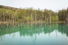 Blauer Teich und Baum Stockfoto