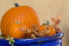 Blauer Topf hält Kürbise und Blätter Stockfotos