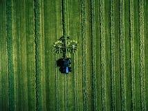 Blauer Traktor, der grünes Feld, Vogelperspektive mäht Lizenzfreies Stockbild