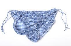 Blauer und weißer Gingham-Schlüpfer Lizenzfreie Stockfotografie