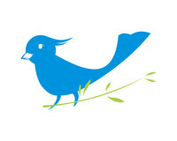 Blauer Vogel Stockfoto