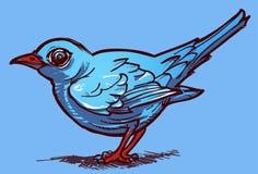 Blauer Vogel auf einem Seeblauhintergrund Stockfotografie