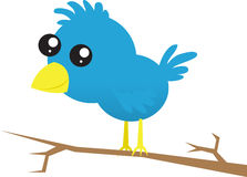 Blauer Vogel auf Zweig stock abbildung