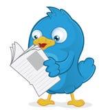 Blauer Vogel, der eine Zeitung liest Stockfoto