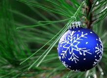 Blauer Weihnachtsfühler auf Baum Stockbilder