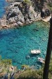 Blauer wilder Nebenfluss Spanien Stockbilder