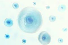 Blauer Zellmensch in der Mitte, wissenschaftlicher Hintergrund der Medizin Abbildung 3D Stockfotografie