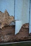 Blaues Abstellgleis mit dem Termiten- und Wetterschaden, der es knackt stockbilder